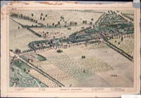 Image of Camille & Dry 1875 map of the Missouri Botanical Garden