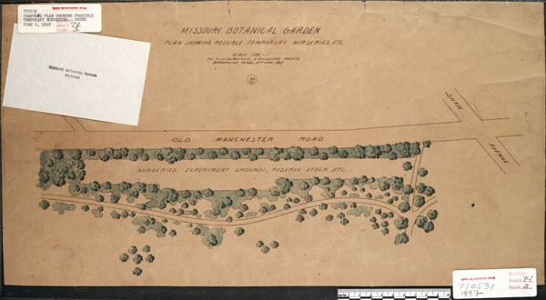 Image of Preliminary plan by the Olmsted Brothers for possible nurseries.