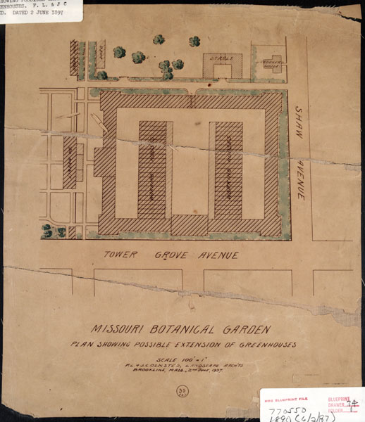 Image of Detail drawing, part of the Olmsted Master Plan, showing a greenhouse complex that was never built in the area of the Fruiticetum in what is now the East end of the Ridgway parking lot.