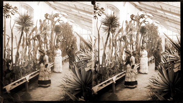 Image of Cacti along west wall of Agave House.  Unidentified persons.  One 5x7 in. black and white enlargement.