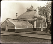 Image of New greenhouses additions built in 1897; the additions were part of the Main Conservatory built in 1868.