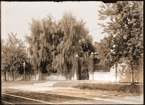 Image of Cleveland Avenue Gate on Tower Grove Avenue.  Also shows wall, street light, and street car tracks.