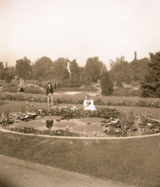 Image of Lily Pond located in the Main Garden.  Man and woman visible. Lily pool east of parterre. Euryale ferox in pool.