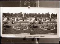 Image of On negative:  'View of Shaw's Missouri Botanical Garden'