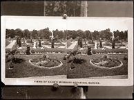 Image of On negative:  'View of Shaw's Missouri Botanical Garden'