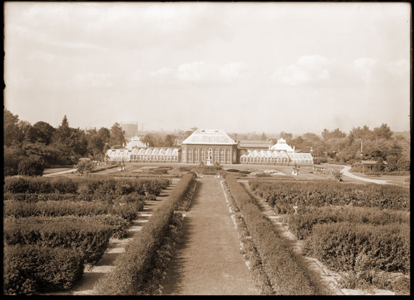 Image of Aerial view of the Main Conservatory (1868-1916).  Shot from top of Tower Grove House, front lens of camera removed to give a telephoto view.  PRINT AVAILABLE -- SEE PHO 1982-0058.  Folder - Conservatory (Main Greenhouse): (historical) Folder #1