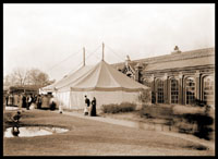 Image of Chrysanthemum tent in front of Linnaean House (exterior).  PRINT AVAILABLE -- SEE PHO 1982-0076.