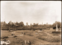 Image of View of Main Garden from top of old palm house looking southwest.  Juno, Observatory, and Victory visible.  Tower of Tower Grove House visible through trees.