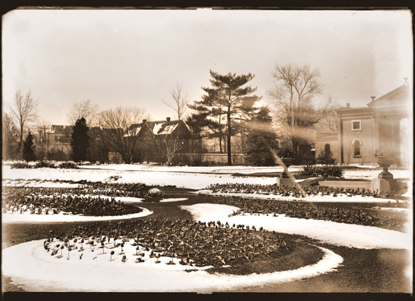 Image of View of Tulip beds in snow, looking east.  Main Gate, wall, and houses across Tower Grove Ave. visible.  Follows 82-0243.