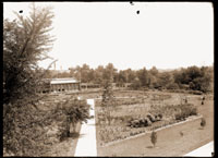 Image of Rose Garden (designed by John Noyes) in front of Linnaean House.  View toward northeast.