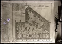 Image of Olmsted Brothers, Landscape Architects, Brookline, Mass.  2 7x5 in. prints.
