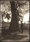 Image of Paul Kohl standing by tree.