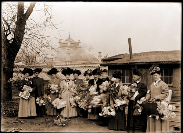 Image of Chrysanthemum Show. Members of the Book and Flower Guild with baskets of flowers to be distributed to charities. Ladies with elaborate hats in front of 1868 Conservatory range.