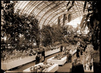 Image of Spring show of the Garden Club of St. Louis on lower level of Floral Display House. Ladies and gentlemen viewing the scale models of landscaped buildings. Hermann von Schrenk at second table in white shirt, no jacket. (Mr. A. E. Brooker possibly standing next to him.)