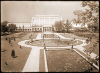 Image of Main Garden Lily Pools with concrete construction; lilies in the fall of 1917.  The newly constructed Palm House is in the background.  Negative available at PHO 2006-2262.