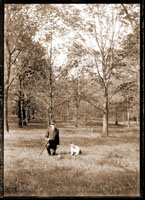 Image of View in the Arboretum. Mr. Eagrs and Norman.  1 5x7 in. print.