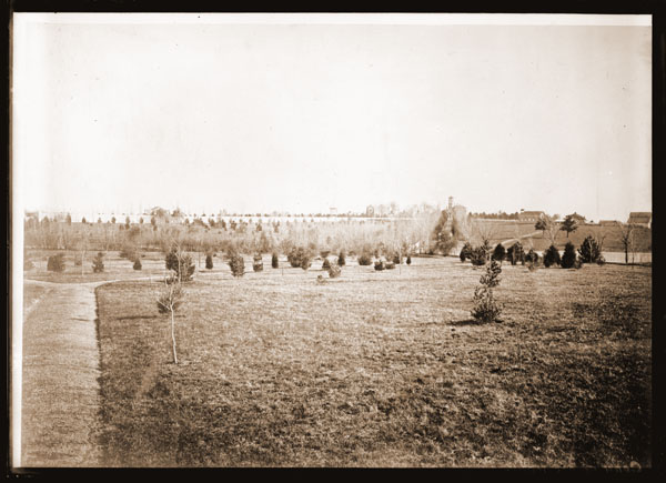 Image of Arboretum planted by Henry Shaw.  The view is to the south east looking from what is now the corner of Vandeventer and Shaw Ave.  Tower Grove House, Museum, and the Main Gate are visible in the background.  This is a copy of an old photograph taken about 1866. Copied in March, 1909.
