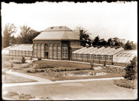 Image of Main Conservatory Greenhouse of the Missouri Botanical Garden.  The structure existed between 1868-1916.