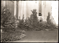Image of Effective banking of plants at the south-east corner of the Varied Industries Building.  2 5x7 in. prints.