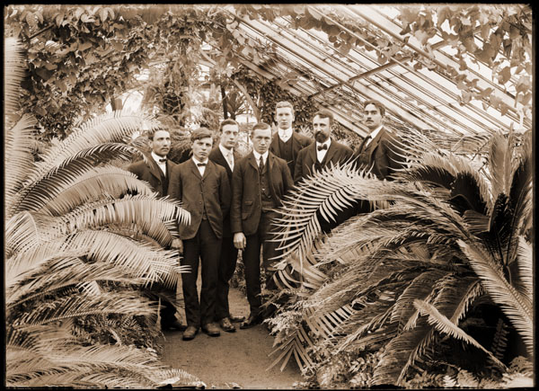 Image of Picture of Garden employees taken in greenhouse in 1906, George Pring is standing third from the right; MBG grounds superintendent Henry Clay Irish is second from the right.