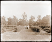 Image of Main Garden with view toward south.  Tower Grove House visible in background along  north/south path.  View is just south of the Observatory.  'Shaw's Garden.'