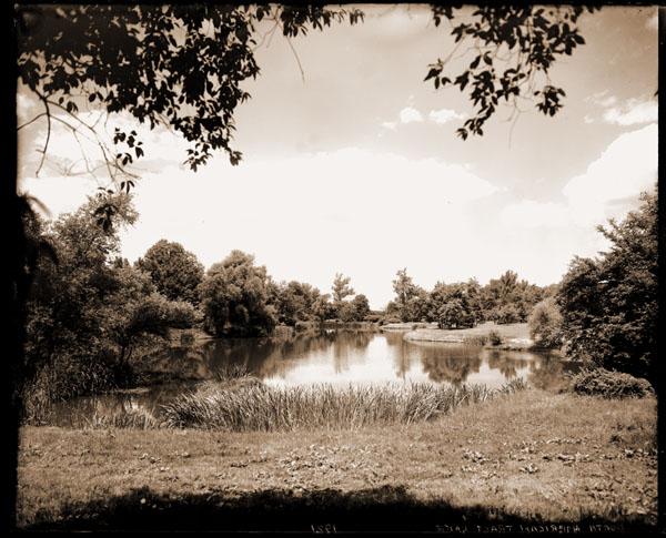 Image of North American Tract lake.