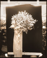 Image of The first Veiled Prophet queen's orchid bouquet.  2- 8 x 10 in. black and white prints.