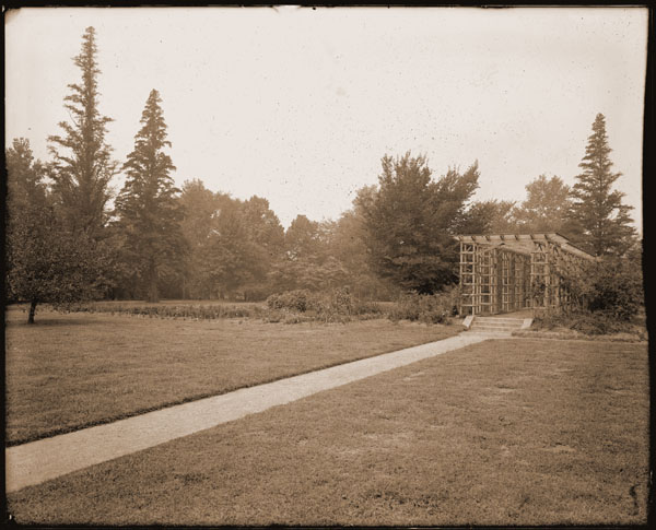 Image of Rose Garden trellis just south of Tower Grove House.  View of test garden for annuals and bald cypresses. 1- 8 x 10 in. black and white print.