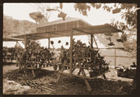 Image of Panama Canal Zone Orchid Station of the Missouri Botanical Garden.  Orchids in pots below shelter, c.1928. 5 x 7 negative.  Print available at PHO 2007-0354.