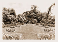Image of View of Feature Garden.