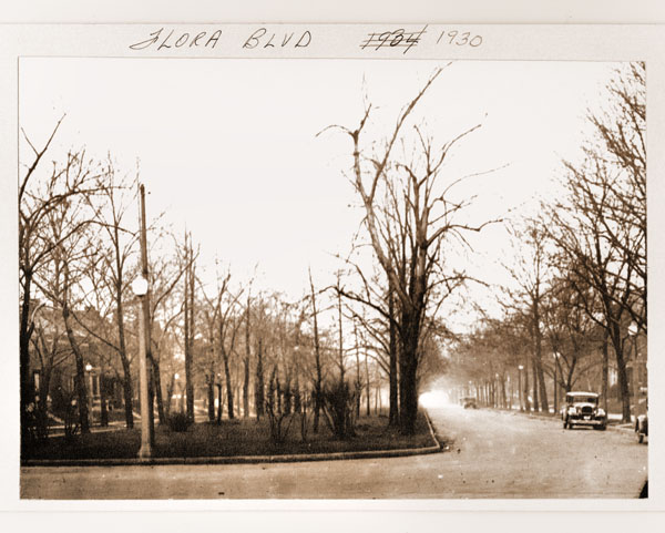 Image of View of Flora Boulevard.  Also known as Flora Avenue or Flora Place.  SEE ALSO OVZ HISTORICAL PHOTOGRAPHS, BOX 2.
