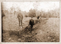Image of Sepia print mounted on display board.  Workers digging trenches.
