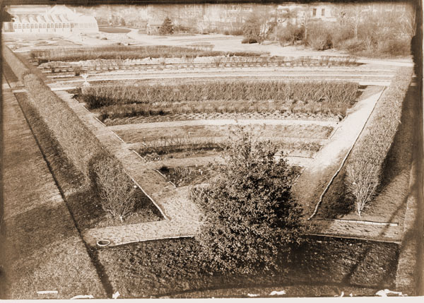 Image of MBG Herbaceous Garden -- part of a panoramic view of the garden shortly before it was removed and replaced.