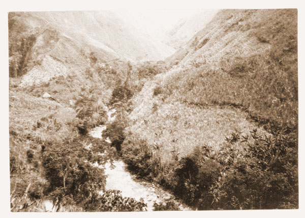 Image of Scene from the Colombian Expedition, c.1923.  Scenic view in Central Andes (near Armema)  River Vieja.