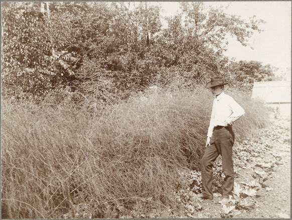 Image of Employee in garden.  Charles Fullgraf as a student.