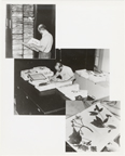 Image of Researcher using the Herbarium when it was located in the Administration Building.  Three images of the Herbarium superimposed into one picture.  Same as PHO 2006-1039 through PHO 2006-1041.