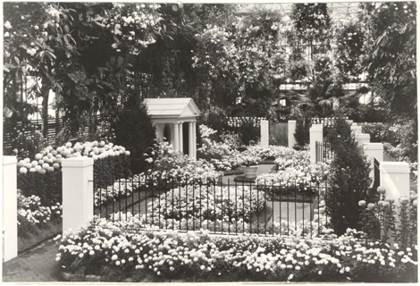 Image of Chrysanthemum Show - 1944.  Mounted with PHO 2005-0004.