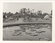 Image of Climatron under construction in 1959.