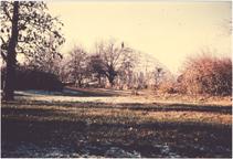 Image of Climatron. Picture taken Nov 29, 1959