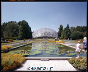 Image of View of Climatron and main Lily Pool in 1975.