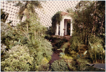 Image of Climatron Interior I - Negative available PHO 2005-0365