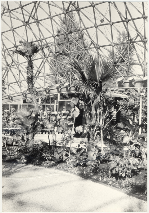 Image of Climatron Interior I
