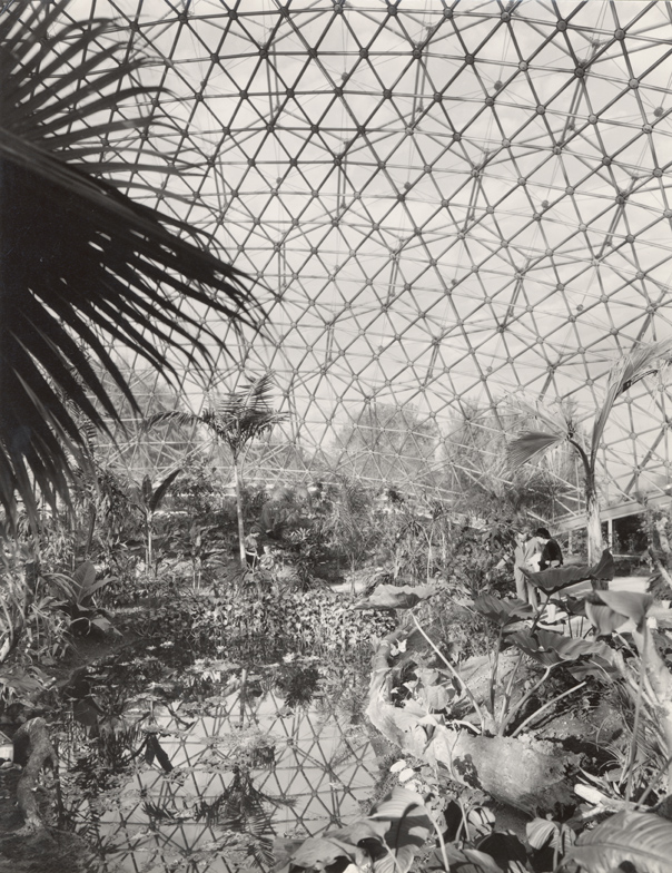Image of Climatron interior with visitors.  Same as PHO 2005-0370
