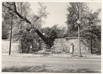 Image of Damage, Windstorm and hail, 1 Sep 1946.  Damage to stonewall.  MBG Bull 35, 1947.  Same as PHO 2005-0555.