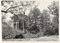 Image of Windstorm and hail damage 1 Sep 46.  North side of museum.  See MBG Bul 35, 1947.  Same as PHO 2005-0560.