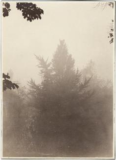 Image of Damage (Smoke) n.d.