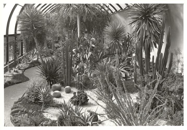 Image of Desert House Interior.  Same as PHO 2005-0632.