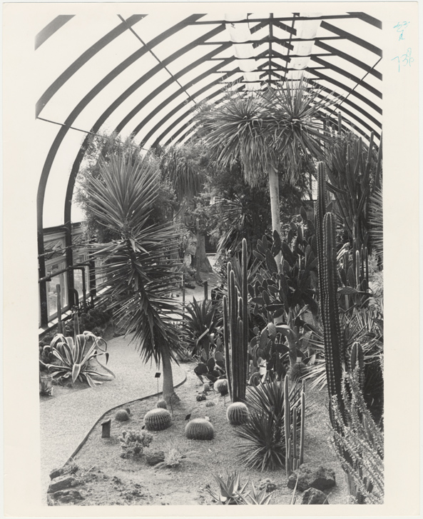 Image of Desert House Interior 1975.  Negative available at PHO 2005-0600.