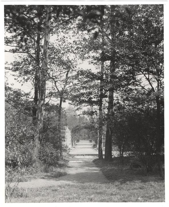 Image of Economic Garden  J. Moore photographs #2237. 1930-31.  John Moore negatives