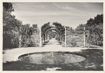 Image of Economic Garden looking north, Aug. 5, 1936.  Mounted with PHO 2005-0667.